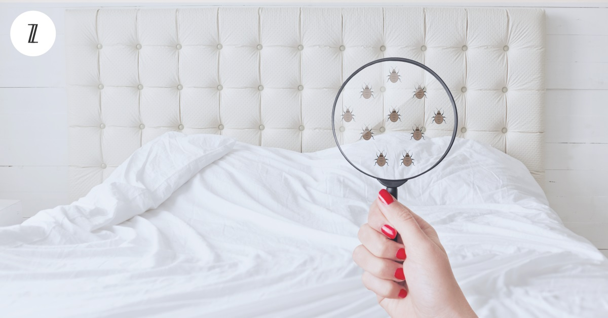 Suffering from Allergies? Your Mattress Could Be the Cause (and Solution)